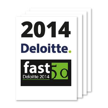 At-a-glance-Deloitte-2014